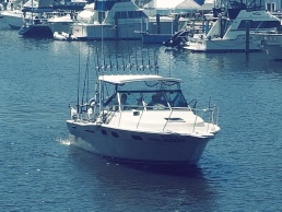 South Haven Fishing Charters